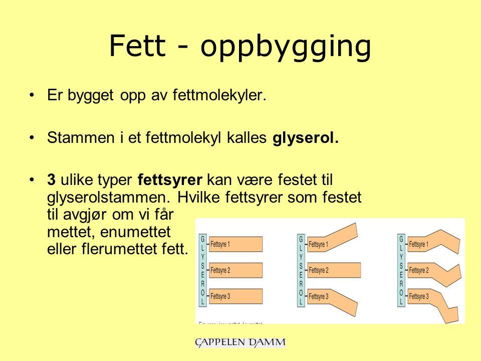 Fett - oppbygging Er bygget opp av fettmolekyler. Stammen i et fettmolekyl kalles glyserol.