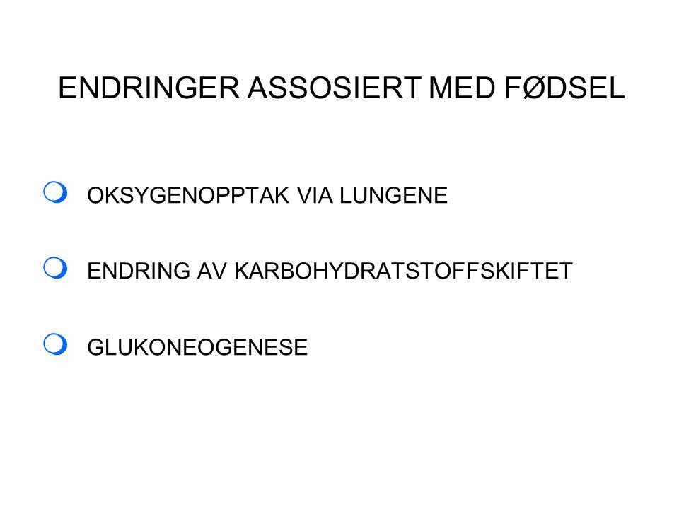 ENDRINGER ASSOSIERT MED FØDSEL  OKSYGENOPPTAK VIA LUNGENE  ENDRING AV KARBOHYDRATSTOFFSKIFTET  GLUKONEOGENESE