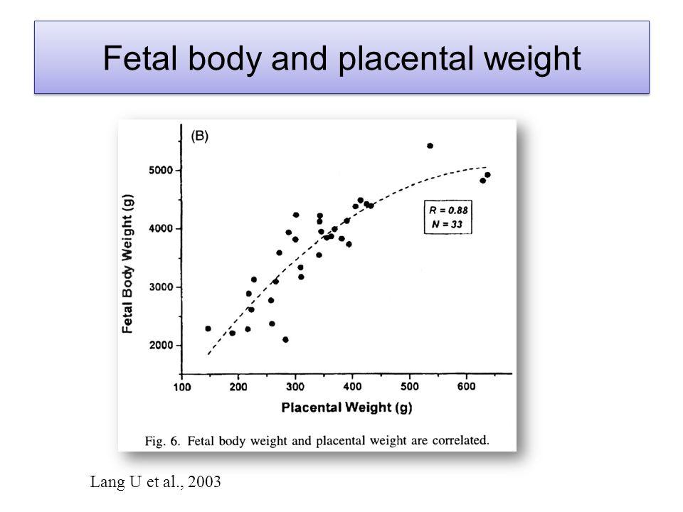 Lang U et al., 2003 Fetal body and placental weight