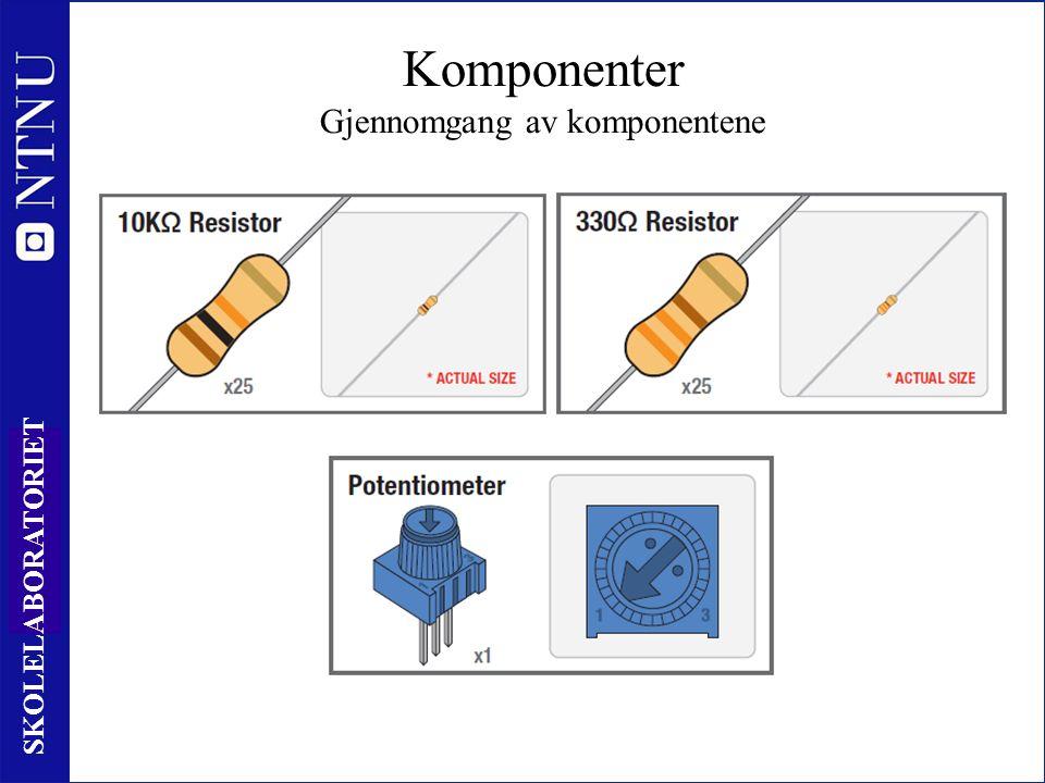 13 SKOLELABORATORIET Komponenter Gjennomgang av komponentene