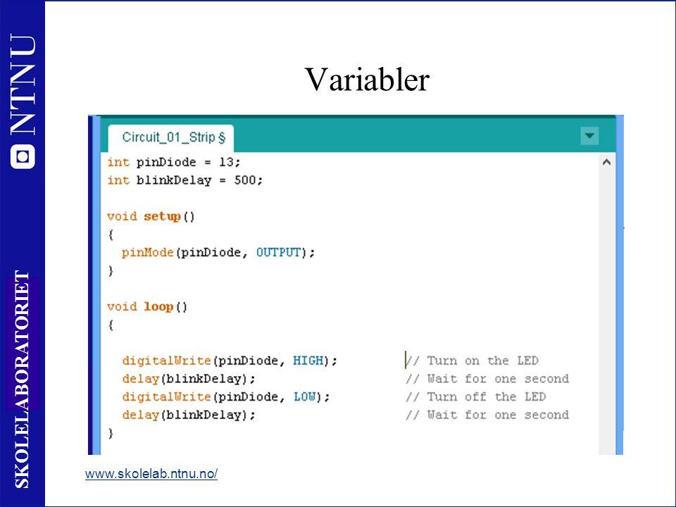 37 SKOLELABORATORIET Variabler www.skolelab.ntnu.no/