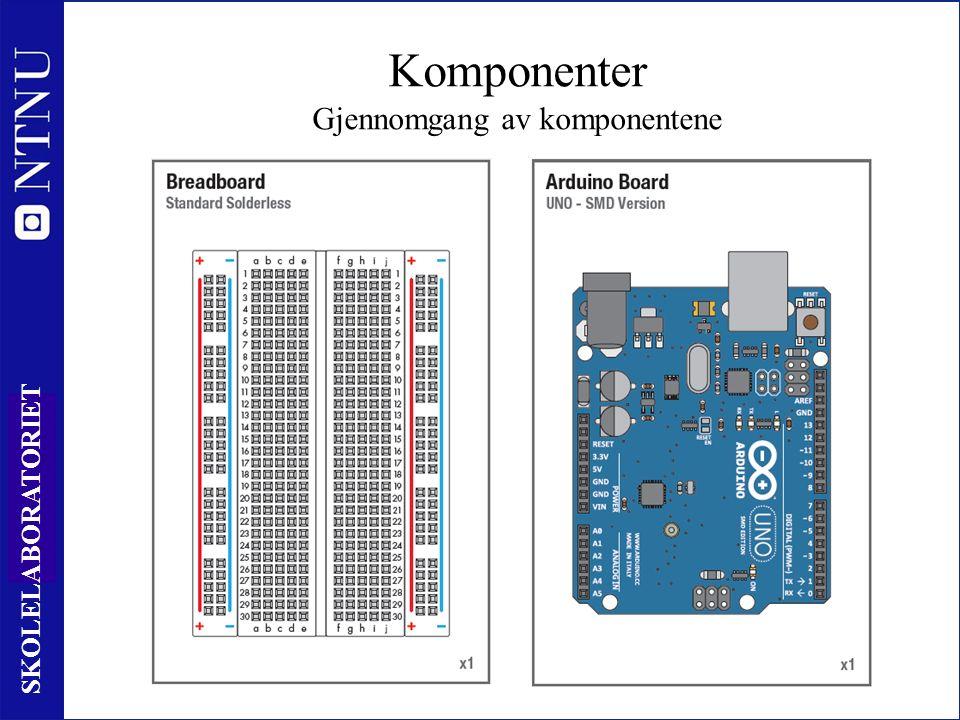 9 SKOLELABORATORIET Komponenter Gjennomgang av komponentene
