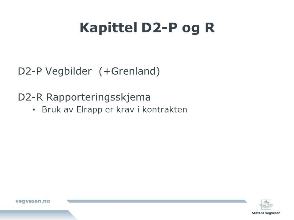 Kapittel D2-P og R D2-P Vegbilder (+Grenland) D2-R Rapporteringsskjema Bruk av Elrapp er krav i kontrakten