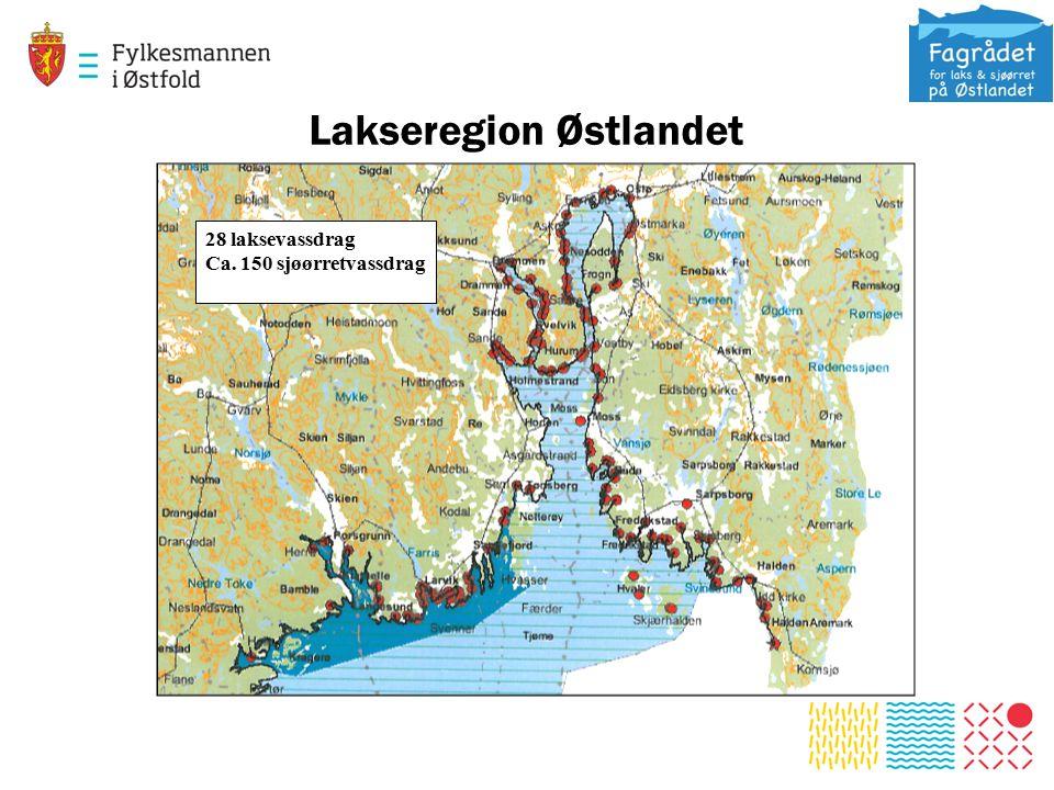 Lakseregion Østlandet 28 laksevassdrag Ca. 150 sjøørretvassdrag