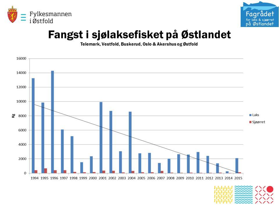 Fangst i sjølaksefisket på Østlandet Telemark, Vestfold, Buskerud, Oslo & Akershus og Østfold