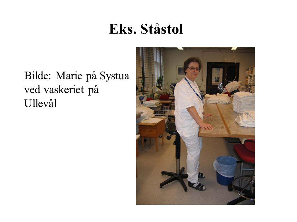 Eks. Ståstol Bilde: Marie på Systua ved vaskeriet på Ullevål