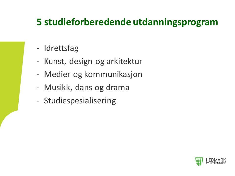 -Idrettsfag -Kunst, design og arkitektur -Medier og kommunikasjon -Musikk, dans og drama -Studiespesialisering 5 studieforberedende utdanningsprogram