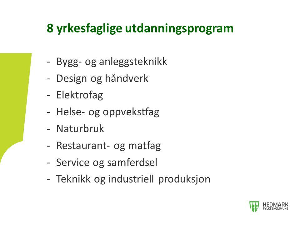 -Bygg- og anleggsteknikk -Design og håndverk -Elektrofag -Helse- og oppvekstfag -Naturbruk -Restaurant- og matfag -Service og samferdsel -Teknikk og i