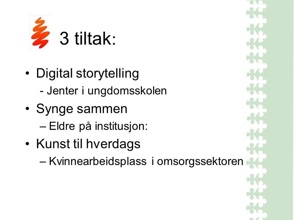 3 tiltak : Digital storytelling - Jenter i ungdomsskolen Synge sammen –Eldre på institusjon: Kunst til hverdags –Kvinnearbeidsplass i omsorgssektoren