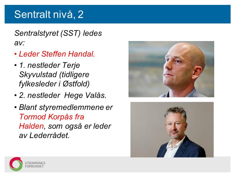 Sentralt nivå, 2 Blant styremedlemmene er Tormod Korpås fra Halden, som også er leder av Lederrådet.