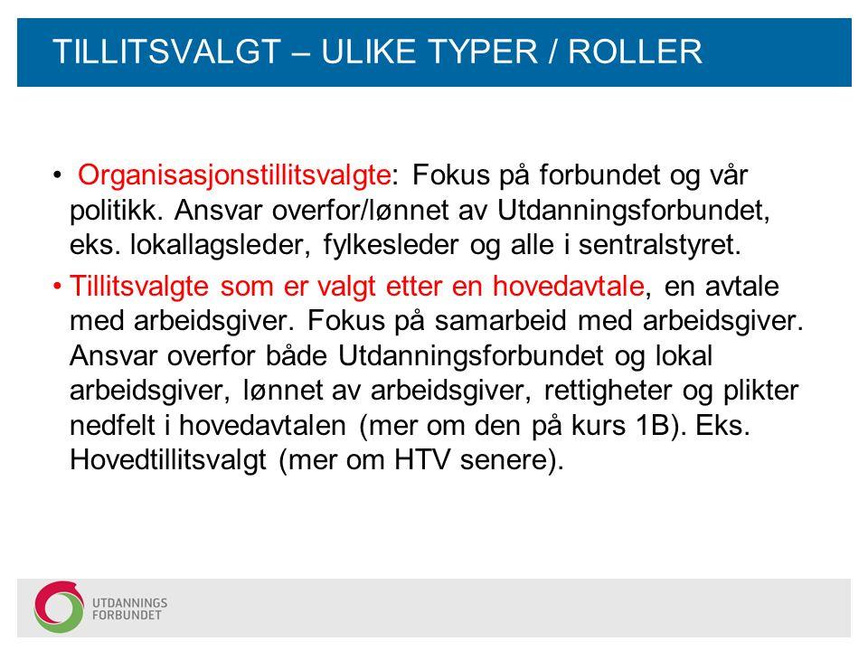 TILLITSVALGT – ULIKE TYPER / ROLLER Organisasjonstillitsvalgte: Fokus på forbundet og vår politikk.