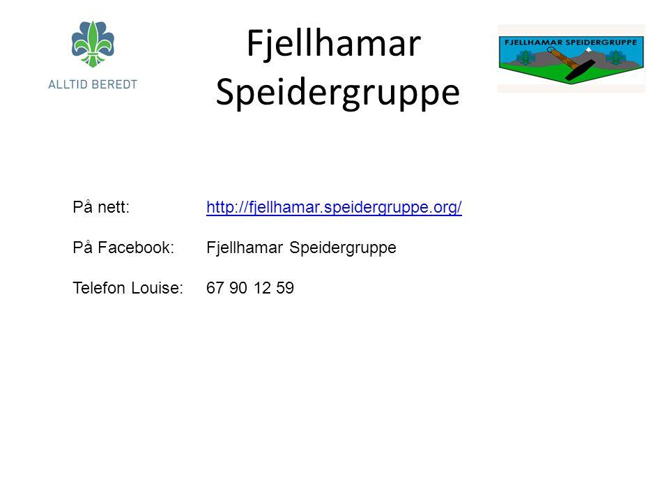 Fjellhamar Speidergruppe På nett: http://fjellhamar.speidergruppe.org/http://fjellhamar.speidergruppe.org/ På Facebook: Fjellhamar Speidergruppe Telefon Louise: 67 90 12 59