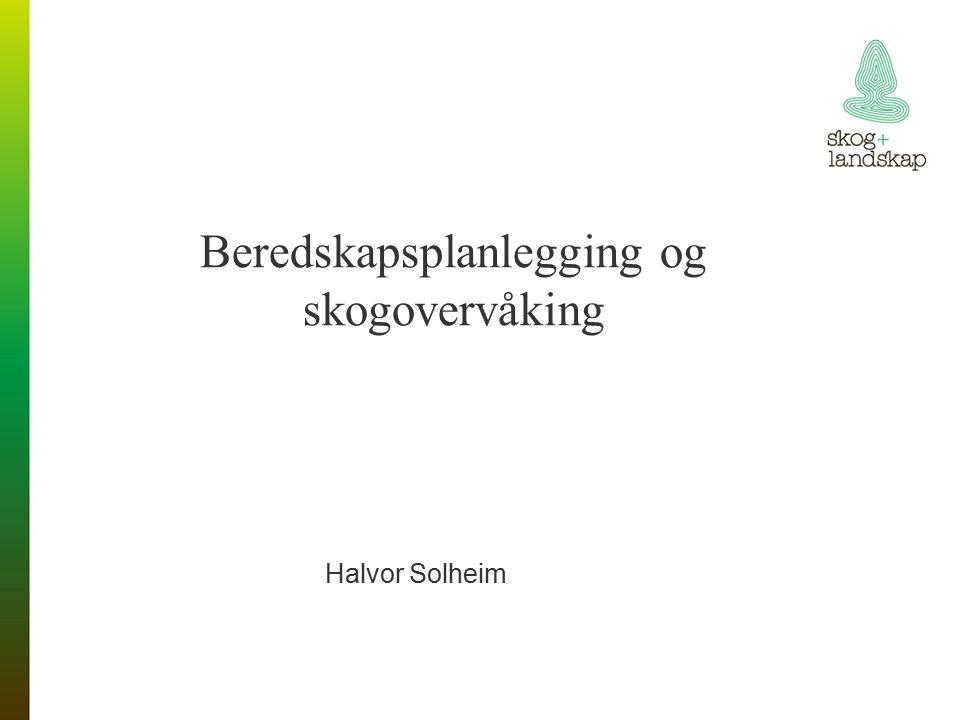 Beredskapsplanlegging og skogovervåking Halvor Solheim