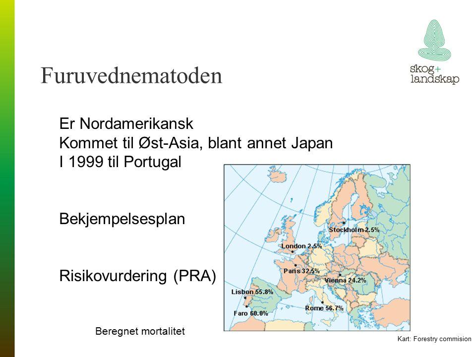 Furuvednematoden Er Nordamerikansk Kommet til Øst-Asia, blant annet Japan I 1999 til Portugal Bekjempelsesplan Risikovurdering (PRA) Beregnet mortalitet Kart: Forestry commision