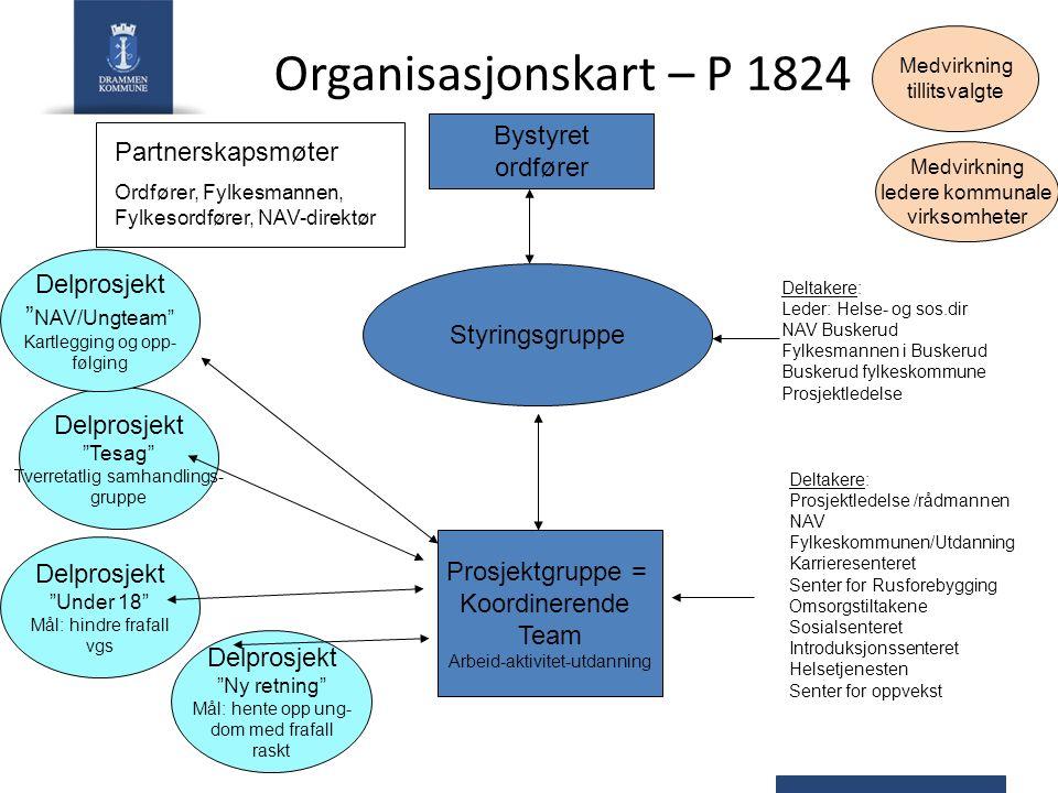 Organisasjonskart – P 1824 Styringsgruppe Prosjektgruppe = Koordinerende Team Arbeid-aktivitet-utdanning Deltakere: Leder: Helse- og sos.dir NAV Buske