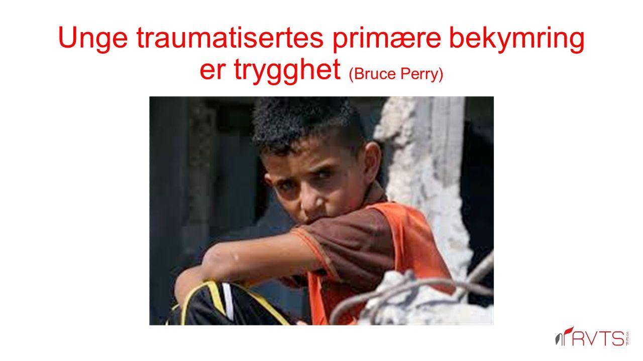 Unge traumatisertes primære bekymring er trygghet (Bruce Perry)