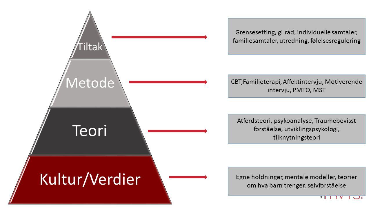Tiltak Metode Teori Kultur/Verdier Grensesetting, gi råd, individuelle samtaler, familiesamtaler, utredning, følelsesregulering CBT,Familieterapi, Aff