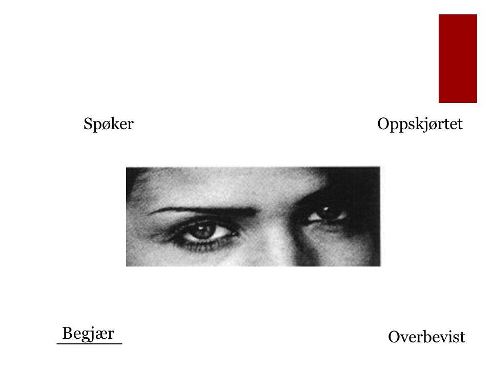 Intervensjoner: Spektrum Støttende og empatisk Klargjøring og utdypning Utforskende og utfordrende Følelsesfokus De terapeutiske forholdene