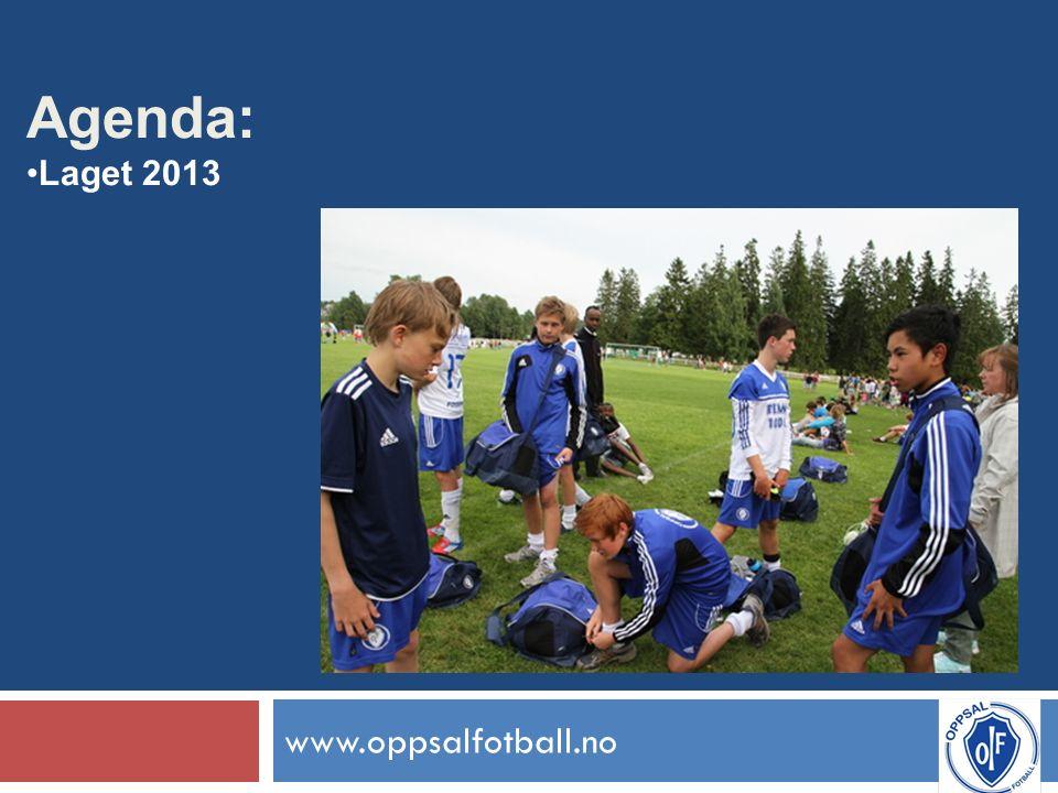 www.oppsalfotball.no Agenda: Laget 2013