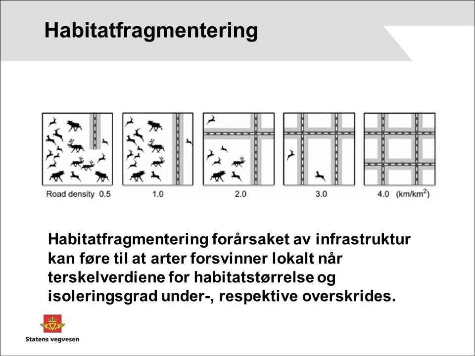 Habitatfragmentering Habitatfragmentering forårsaket av infrastruktur kan føre til at arter forsvinner lokalt når terskelverdiene for habitatstørrelse og isoleringsgrad under-, respektive overskrides.