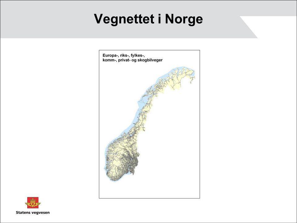 Vegnettet i Norge