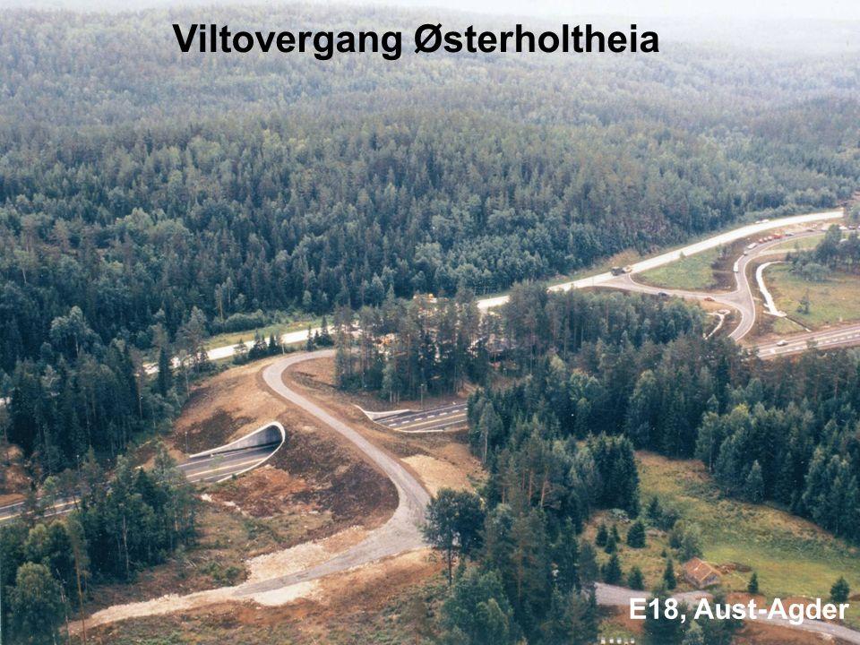 Viltovergang Østerholtheia E18, Aust-Agder