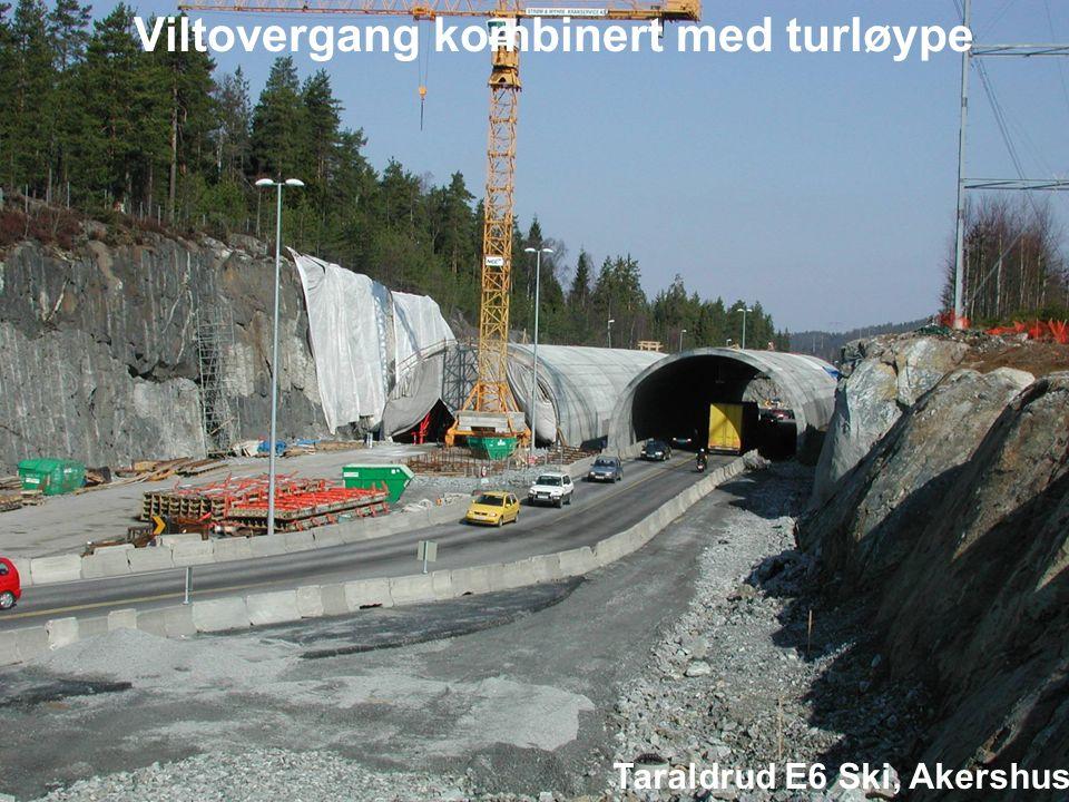 Viltovergang kombinert med turløype Taraldrud E6 Ski, Akershus