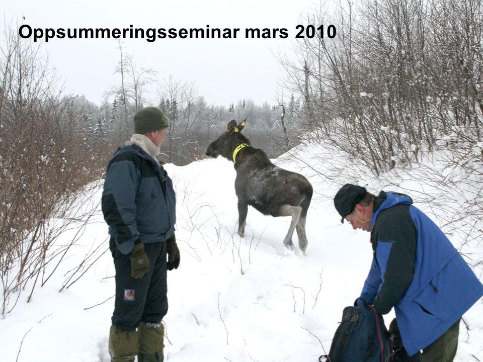 Oppsummeringsseminar mars 2010