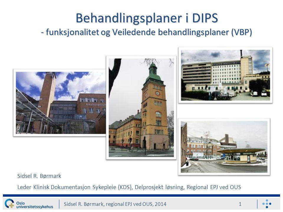 Behandlingsplaner i DIPS - funksjonalitet og Veiledende behandlingsplaner (VBP) Sidsel R.