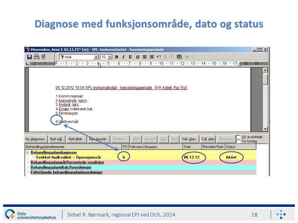 Diagnose med funksjonsområde, dato og status Sidsel R. Børmark, regional EPJ ved OUS, 2014 18