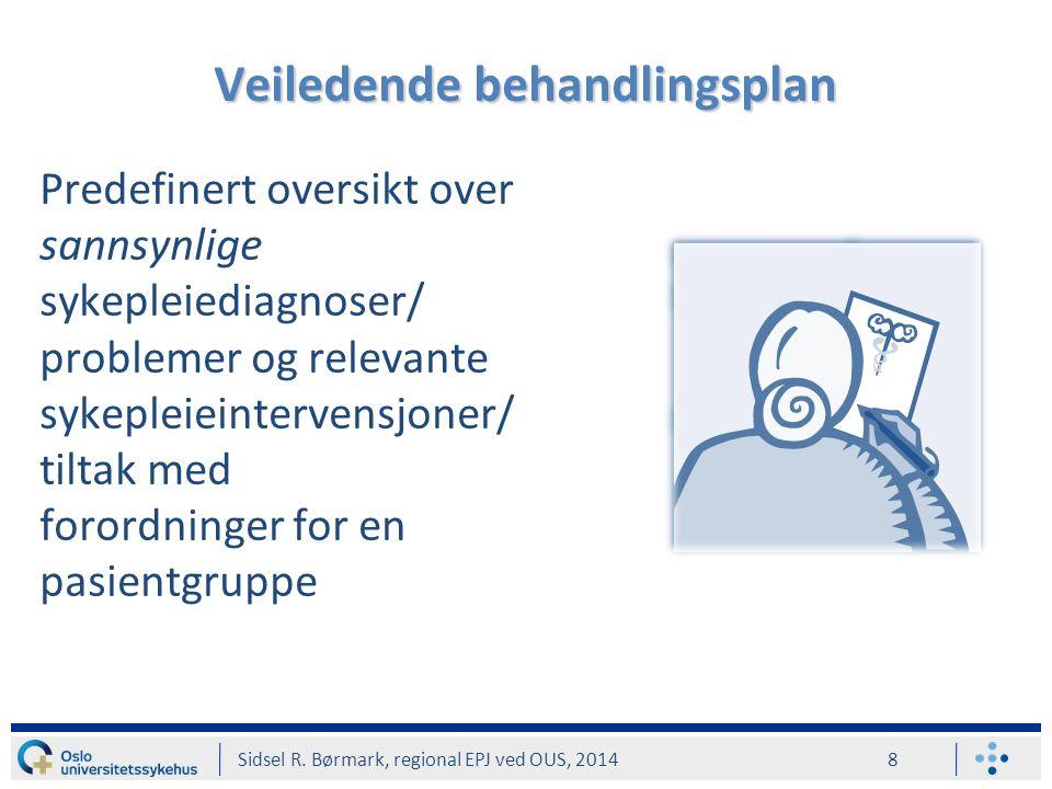 Fritekstelement Sidsel R. Børmark, regional EPJ ved OUS, 2014 19