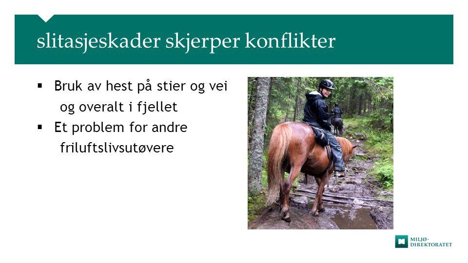 slitasjeskader skjerper konflikter  Bruk av hest på stier og vei og overalt i fjellet  Et problem for andre friluftslivsutøvere