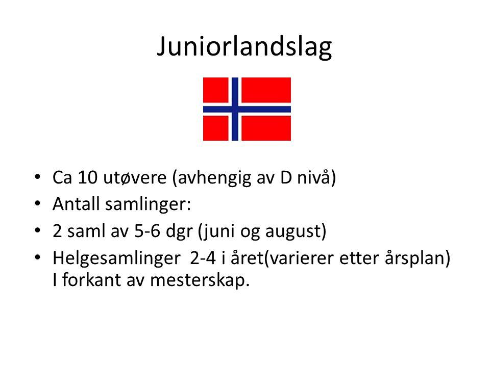 Juniorlandslag Ca 10 utøvere (avhengig av D nivå) Antall samlinger: 2 saml av 5-6 dgr (juni og august) Helgesamlinger 2-4 i året(varierer etter årsplan) I forkant av mesterskap.