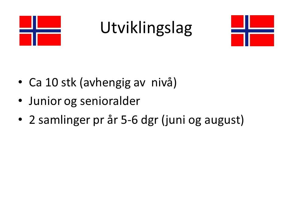 Utviklingslag Ca 10 stk (avhengig av nivå) Junior og senioralder 2 samlinger pr år 5-6 dgr (juni og august)