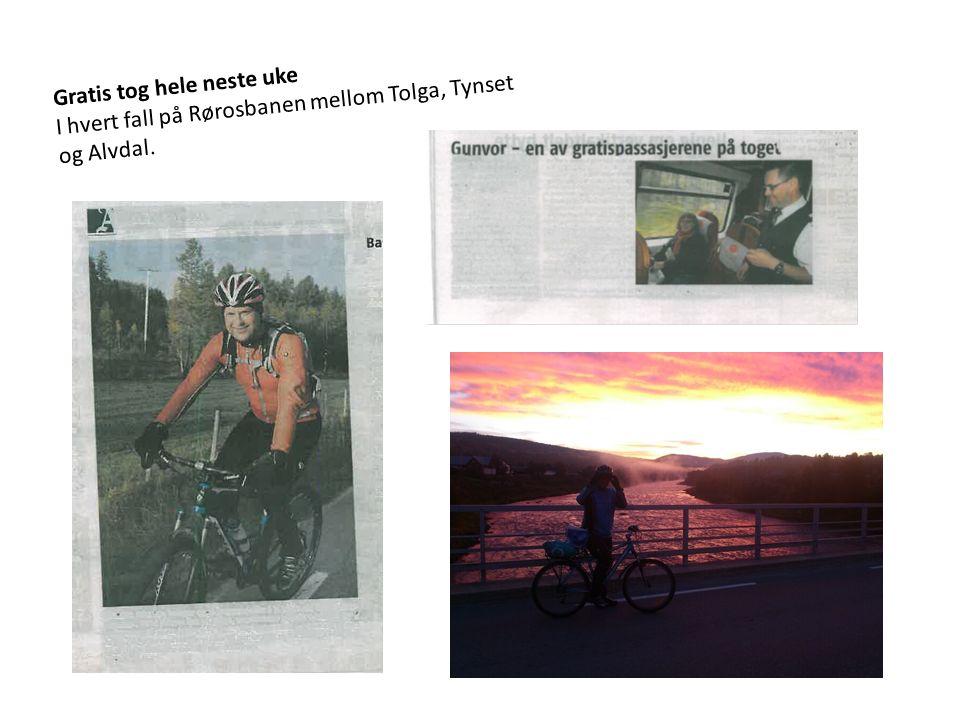 Gratis tog hele neste uke I hvert fall på Rørosbanen mellom Tolga, Tynset og Alvdal.