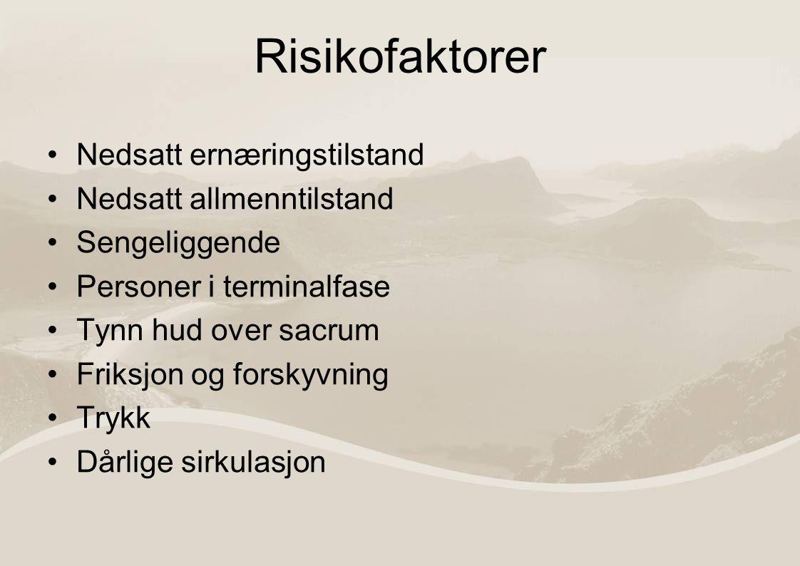 Retningslinjer for vurdering av trykksårpasienter http://www.epuap.org/guidelines/QRG_Prev ention_in_Norwegian.pdfhttp://www.epuap.org/guidelines/QRG_Prev ention_in_Norwegian.pdf Risikovurdering Vurdering av huden Ernæring for trykksårforebygging Stillingsforandring for trykksårforebygging Trykkavlastende underlag