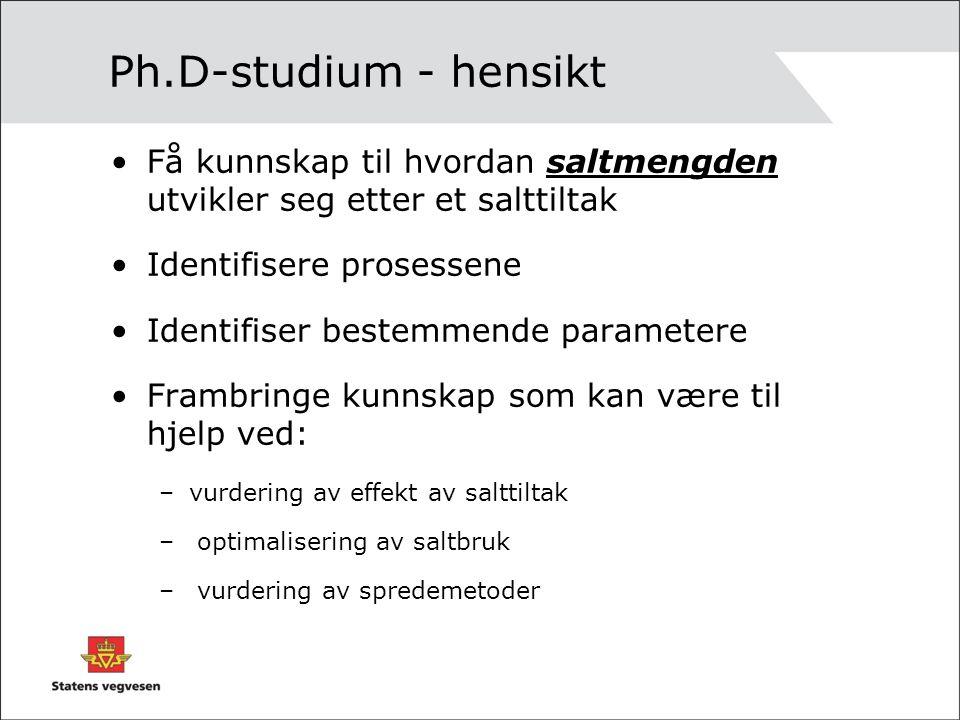 Ph.D-studium - hensikt Få kunnskap til hvordan saltmengden utvikler seg etter et salttiltak Identifisere prosessene Identifiser bestemmende parametere Frambringe kunnskap som kan være til hjelp ved: –vurdering av effekt av salttiltak – optimalisering av saltbruk – vurdering av spredemetoder