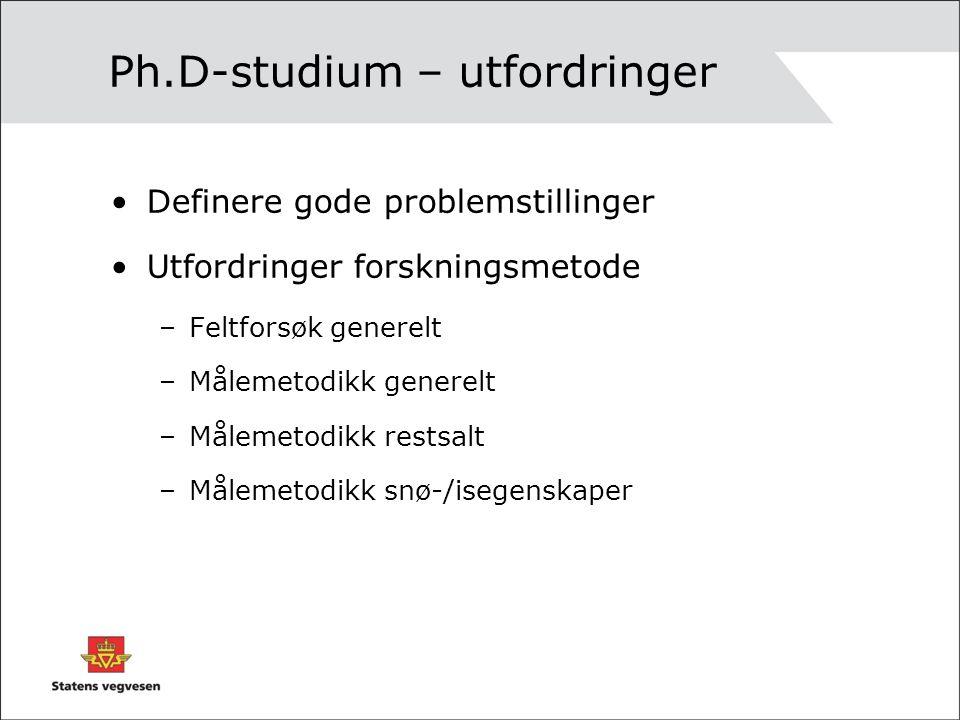 Ph.D-studium – utfordringer Definere gode problemstillinger Utfordringer forskningsmetode –Feltforsøk generelt –Målemetodikk generelt –Målemetodikk re
