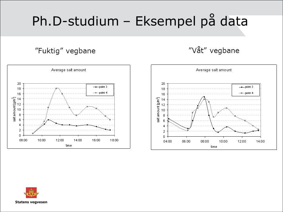 """Ph.D-studium – Eksempel på data """"Fuktig"""" vegbane """"Våt"""" vegbane"""