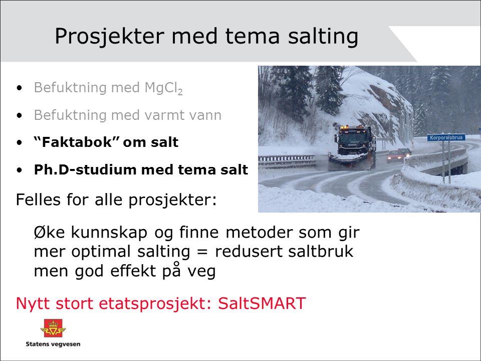 Prosjekter med tema salting Befuktning med MgCl 2 Befuktning med varmt vann Faktabok om salt Ph.D-studium med tema salt Felles for alle prosjekter: Øke kunnskap og finne metoder som gir mer optimal salting = redusert saltbruk men god effekt på veg Nytt stort etatsprosjekt: SaltSMART