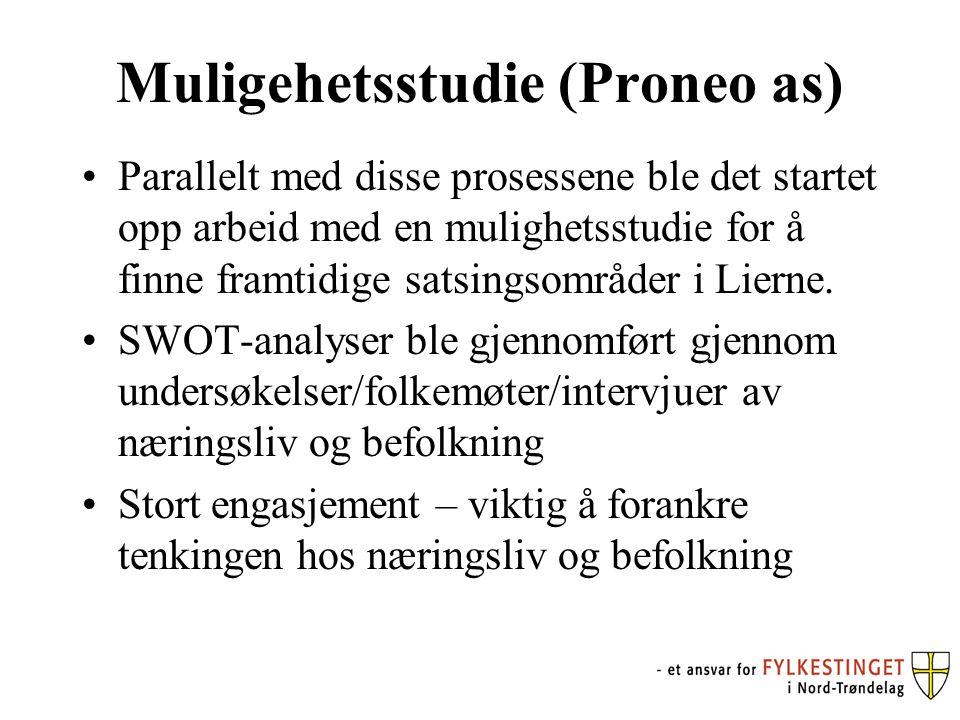 Muligehetsstudie (Proneo as) Parallelt med disse prosessene ble det startet opp arbeid med en mulighetsstudie for å finne framtidige satsingsområder i Lierne.