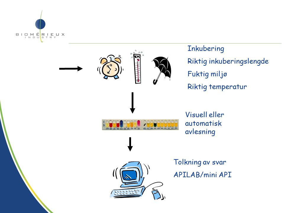 Standardisering –Generell metode Primær agar eller spredningsagar Oppslemming til riktig tetthet Sekundærspredning for verifisering av renkultur eller for tilleggstester Oppsett, inokulering av valgt type strips.