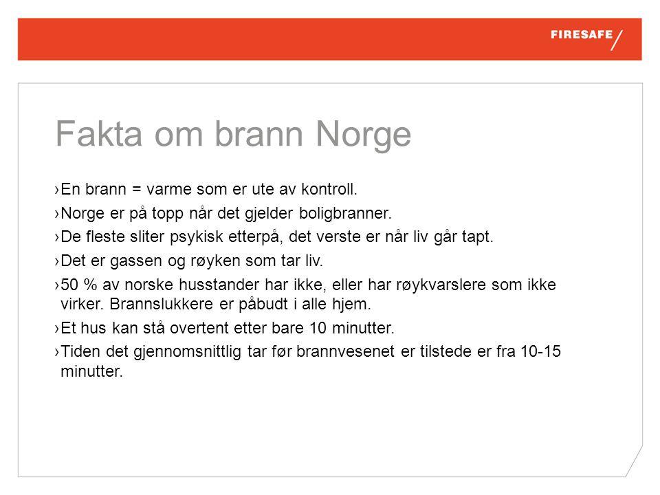Fakta om brann Norge ›En brann = varme som er ute av kontroll.