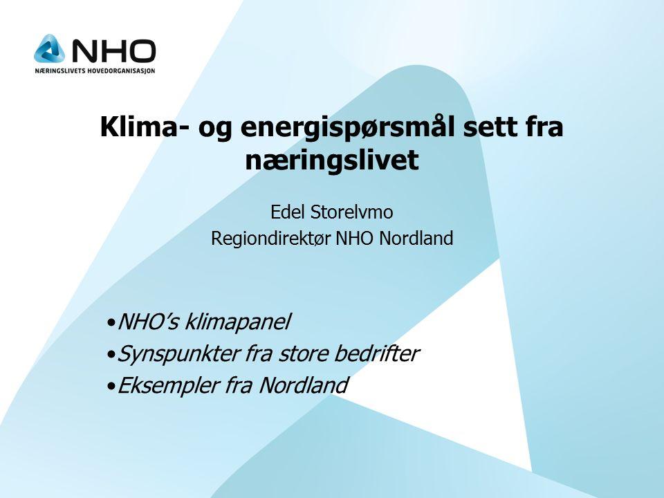 Klima- og energispørsmål sett fra næringslivet Edel Storelvmo Regiondirektør NHO Nordland NHO's klimapanel Synspunkter fra store bedrifter Eksempler f