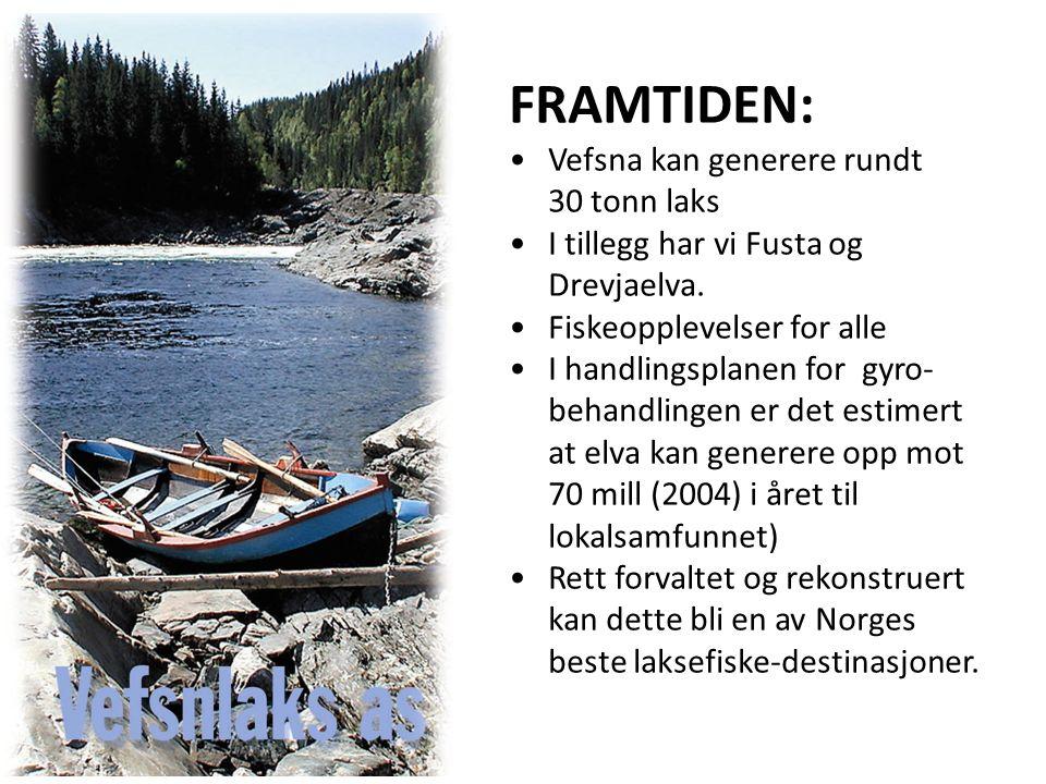 FRAMTIDEN: Vefsna kan generere rundt 30 tonn laks I tillegg har vi Fusta og Drevjaelva.