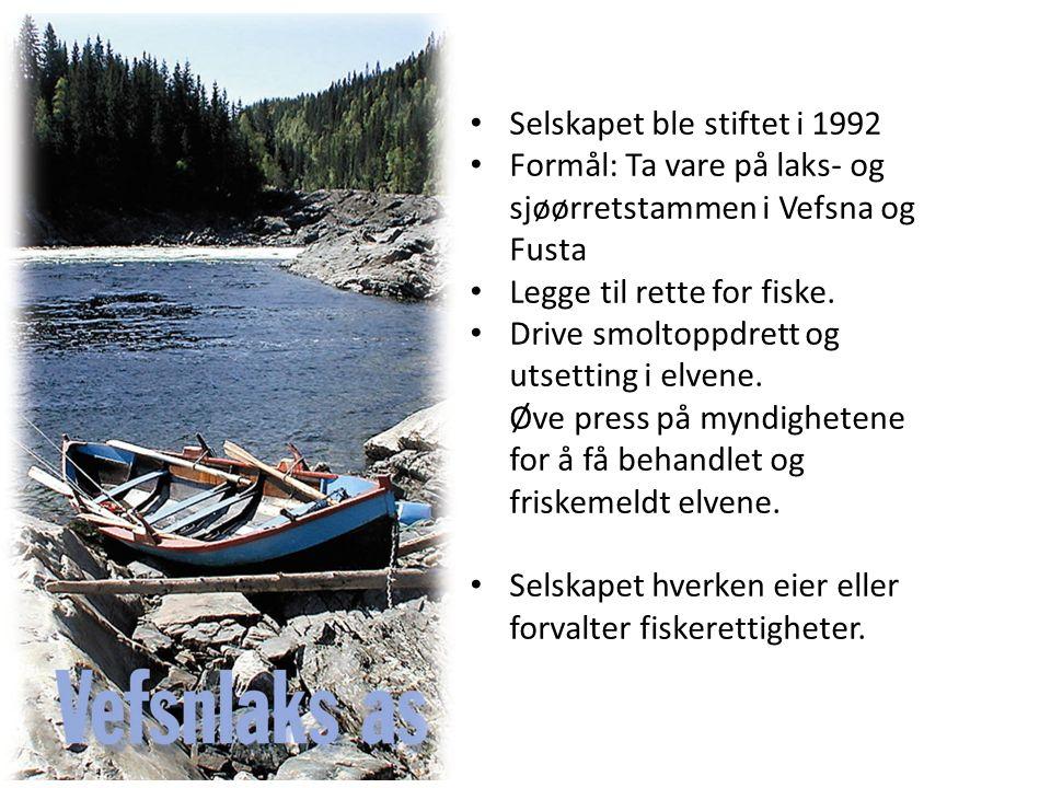 Selskapet ble stiftet i 1992 Formål: Ta vare på laks- og sjøørretstammen i Vefsna og Fusta Legge til rette for fiske.