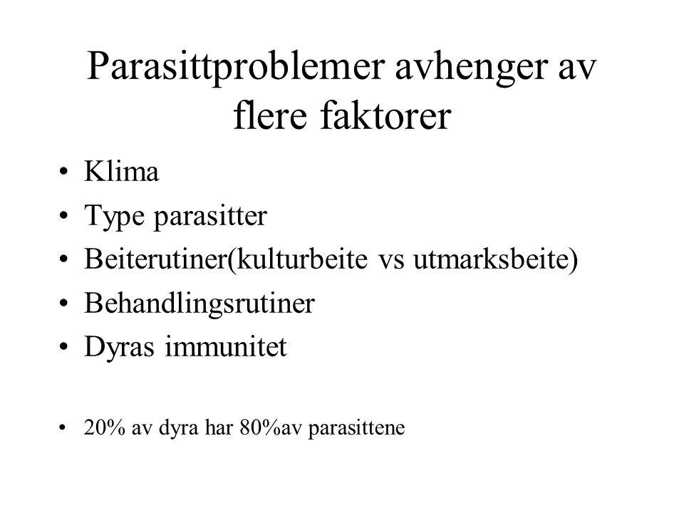 Parasittproblemer avhenger av flere faktorer Klima Type parasitter Beiterutiner(kulturbeite vs utmarksbeite) Behandlingsrutiner Dyras immunitet 20% av dyra har 80%av parasittene