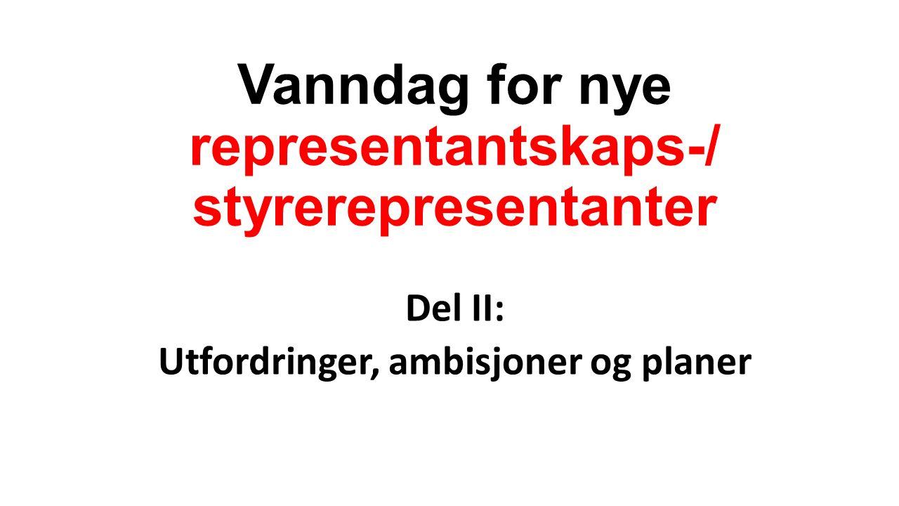 Vanndag for nye representantskaps-/ styrerepresentanter Del II: Utfordringer, ambisjoner og planer
