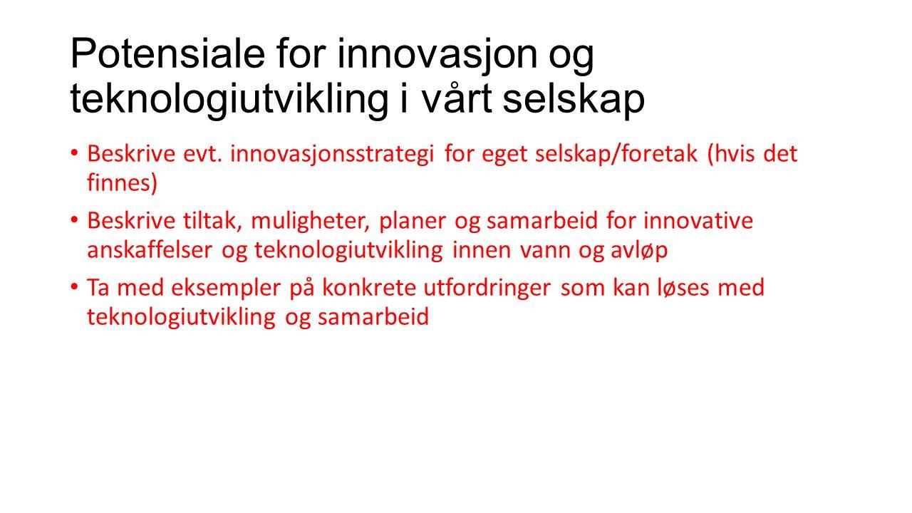 Potensiale for innovasjon og teknologiutvikling i vårt selskap Beskrive evt. innovasjonsstrategi for eget selskap/foretak (hvis det finnes) Beskrive t