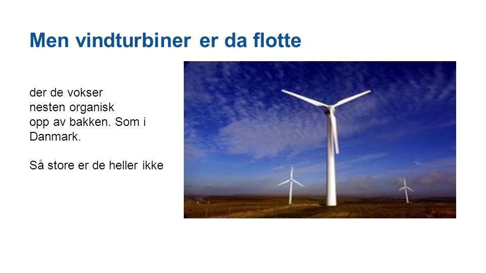 Men vindturbiner er da flotte der de vokser nesten organisk opp av bakken. Som i Danmark. Så store er de heller ikke